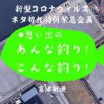 【新型コロナウィルス特別緊急企画】第九回!東京ゲートブリッジのトラス桁が組み立てられた富津の港