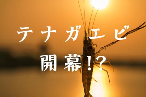 【テナガエビ2021】荒川テナガエビは開幕したのか調査してみた!